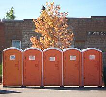 Orange Beauty-LaVeta Colorado by BLONDIELV
