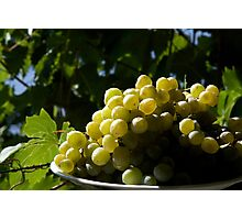 Green Grapes Photographic Print