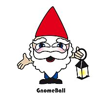 Gnome Ball Photographic Print