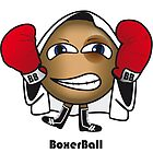 Boxer Ball by brendonm