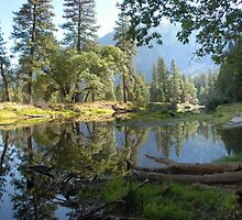 Yosemite Reflection Pano by tom j deters