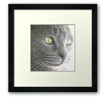 The Green Eyed Monster   WOOLY Framed Print