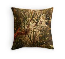Busy Spider Throw Pillow
