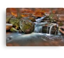 Stream Canvas Print
