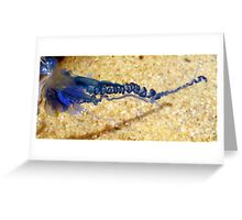 From The Rockpool - Blue Bottle Greeting Card