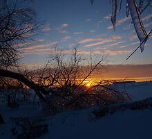 Icy sunset by maragoldlady