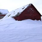 barn snow by maragoldlady