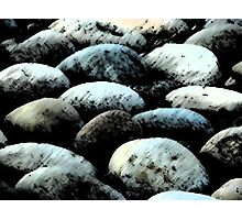 Rock Concert Photographic Print