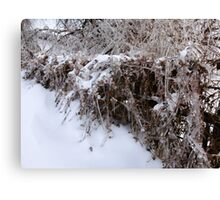 Icy Fence Canvas Print
