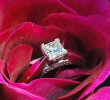 Katie's Engagement Ring by MissyD