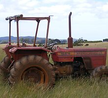 Old Massey Ferguson tractor. by Esther's Art and Photography