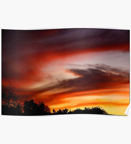 1/4/10 Sunset Poster