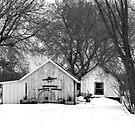 ....black and white effect...rural farm... by Lynne Prestebak