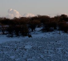 Dyke in snow with shadow scrub and cloud by Darren Kearney