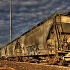 HDR Trains and Graffiti by Sue  Cullumber