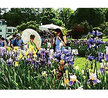 Presby Iris Garden Photographic Print