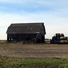 The Old Hay Barn by Brian Gaynor