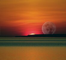 Twilight by mark4321