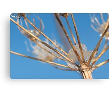 Reaching Out for the Sky - JUSTART ©  Canvas Print
