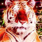 ~Strength~ *Siberian Tiger*  by midnightdreamer