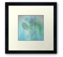 You are So Soft - JUSTART ©  Framed Print