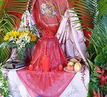Santeria Shrine, Havana, Cuba by apricotargante