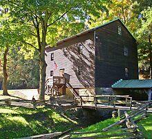 Gaston's Mill by Monnie Ryan