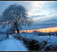 Sunset down a snowy lane by Shaun Whiteman