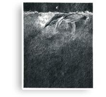 Humpbacks - night ocean Canvas Print