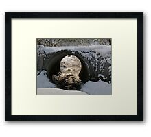 A Brave New World Out There Framed Print