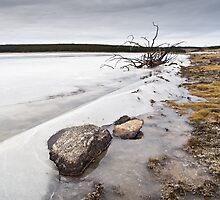 Frozen lake by thonycity