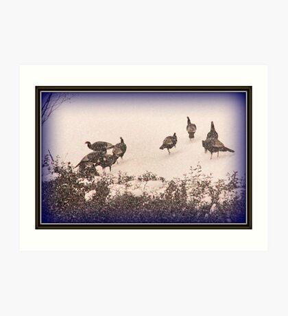 Snow Turkeys Art Print