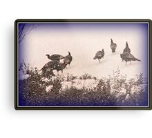 Snow Turkeys Metal Print