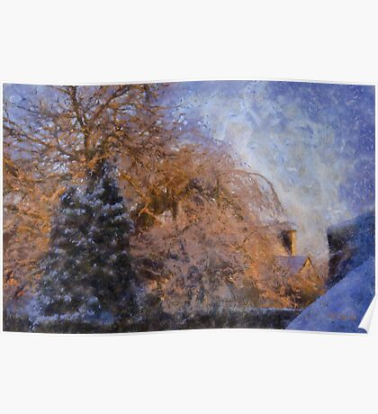 Snowy Trees in morning sun Poster