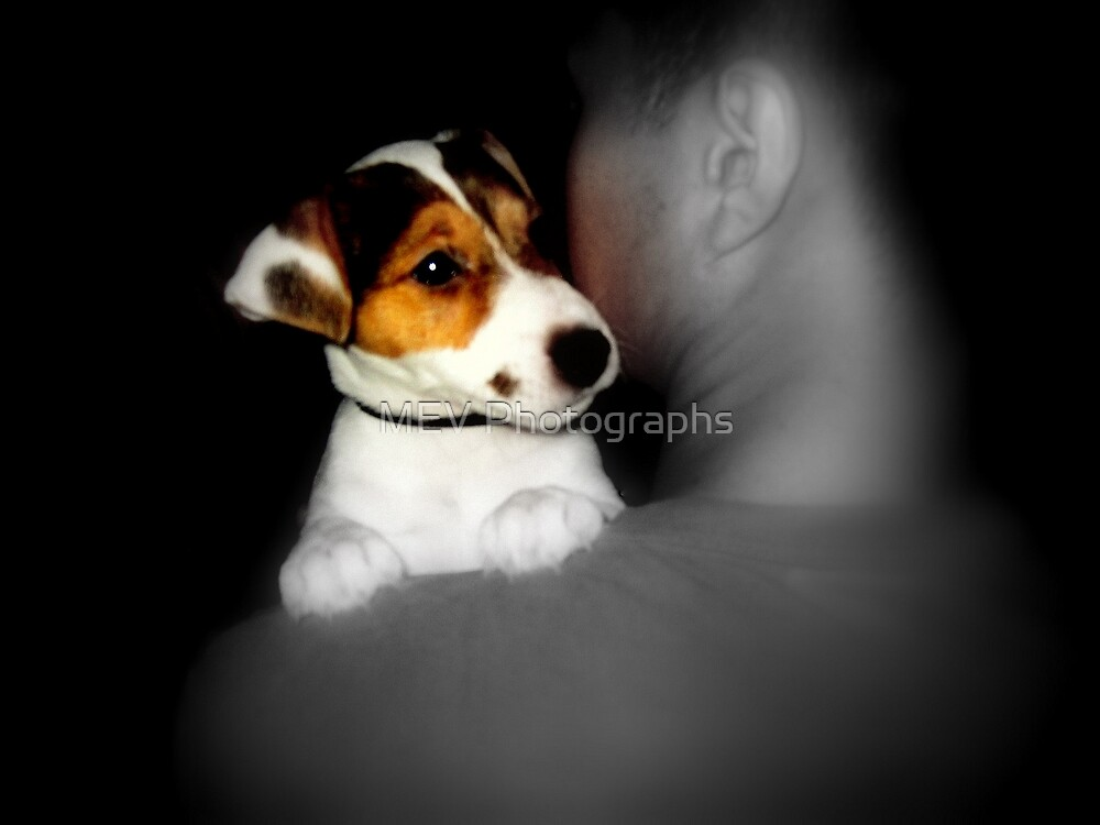 Puppy Love by MEV Photographs