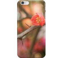Blossom Amidst the Thorns iPhone Case/Skin