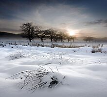 Winter Hymnal II by colin campbell