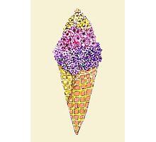 Natural Ice Cream Photographic Print