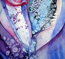 The Veil by Shoshanna Bauer