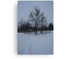 Dull Winter's Day Canvas Print