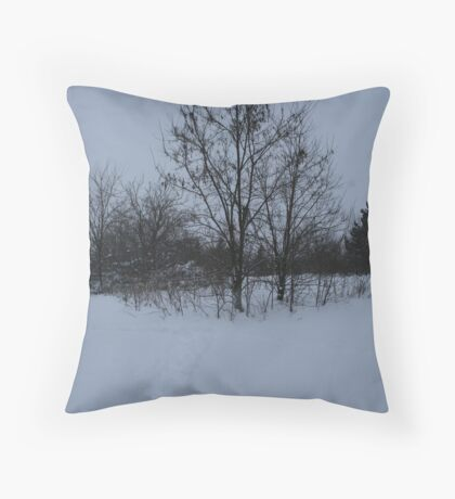 Dull Winter's Day Throw Pillow