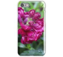 droplets on a flower iPhone Case/Skin