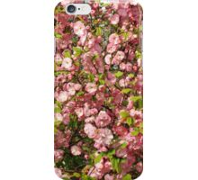 Pink flowers background iPhone Case/Skin