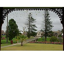 From The Rotunda, Strathalbyn park, with lots of boidies Photographic Print