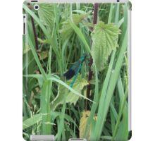 common blue 2 iPad Case/Skin