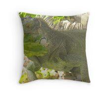 You wanna Iguana? Throw Pillow