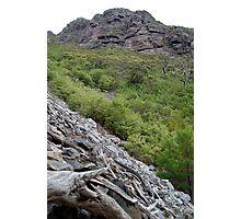 Toolbrunup Peak, Stirling Ranges WA Photographic Print