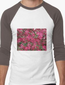 Pink flowers of apple Men's Baseball ¾ T-Shirt