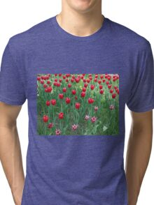 A large bed of red tulips Tri-blend T-Shirt