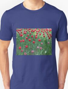 A large bed of red tulips Unisex T-Shirt